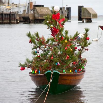 1214-nantucket-christmas-tree-1
